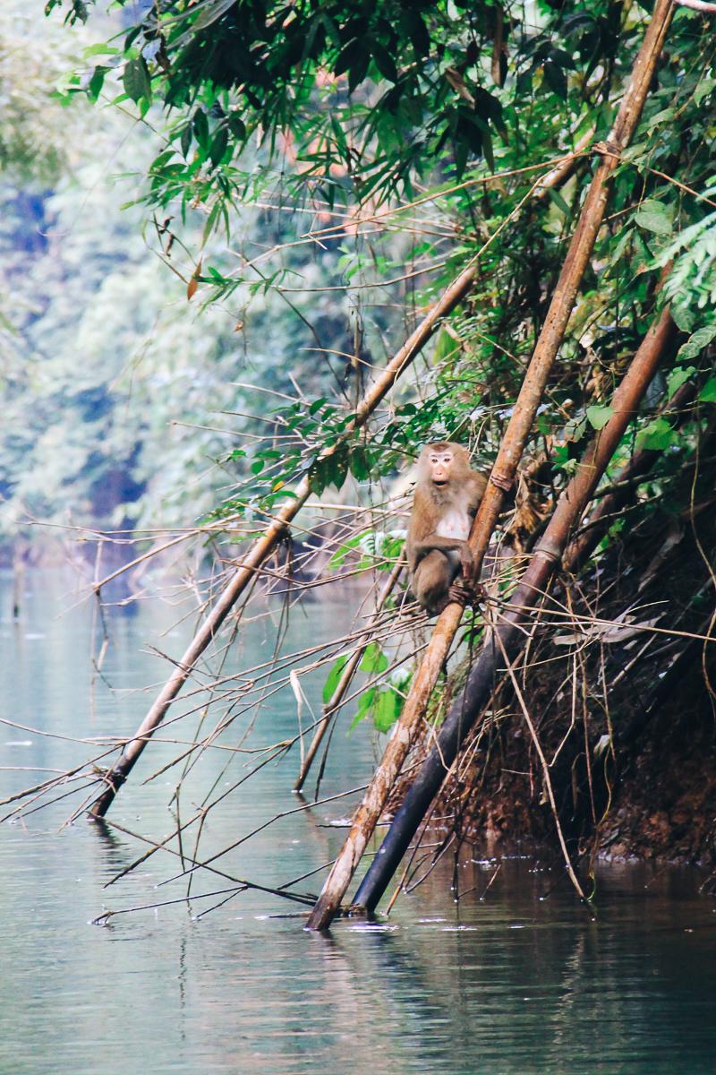 Thailand-fotografie-reisfotografie63